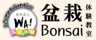 bonsaicatch